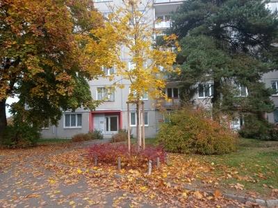 Prodej, byt 3+1, 80m2, ul. Vokáčova, Rokycany